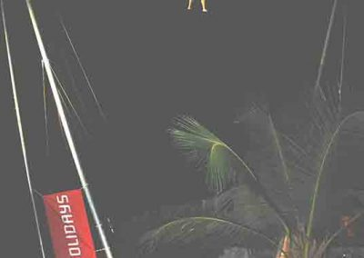 Jumpzone Bungy Trampoline - big air